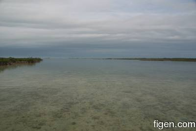 big_081201-bahamas-abaco-gloom.html