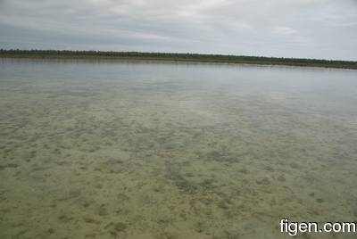 big_081201-bahamas-abaco-gloom4.html